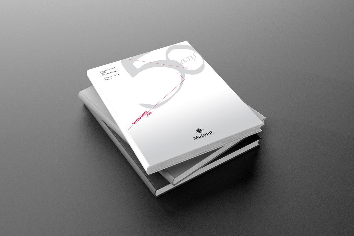 Couverture du Rapport Annuel 2010